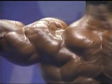 Mr. Olympia 1993 - Flex Wheeler