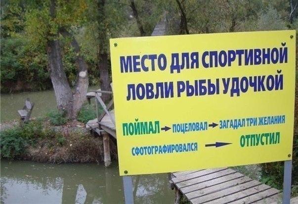 борьба с коррупцией как рыбалка на дискавери