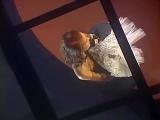 Лайма Вайкуле   Скрипач на крыше