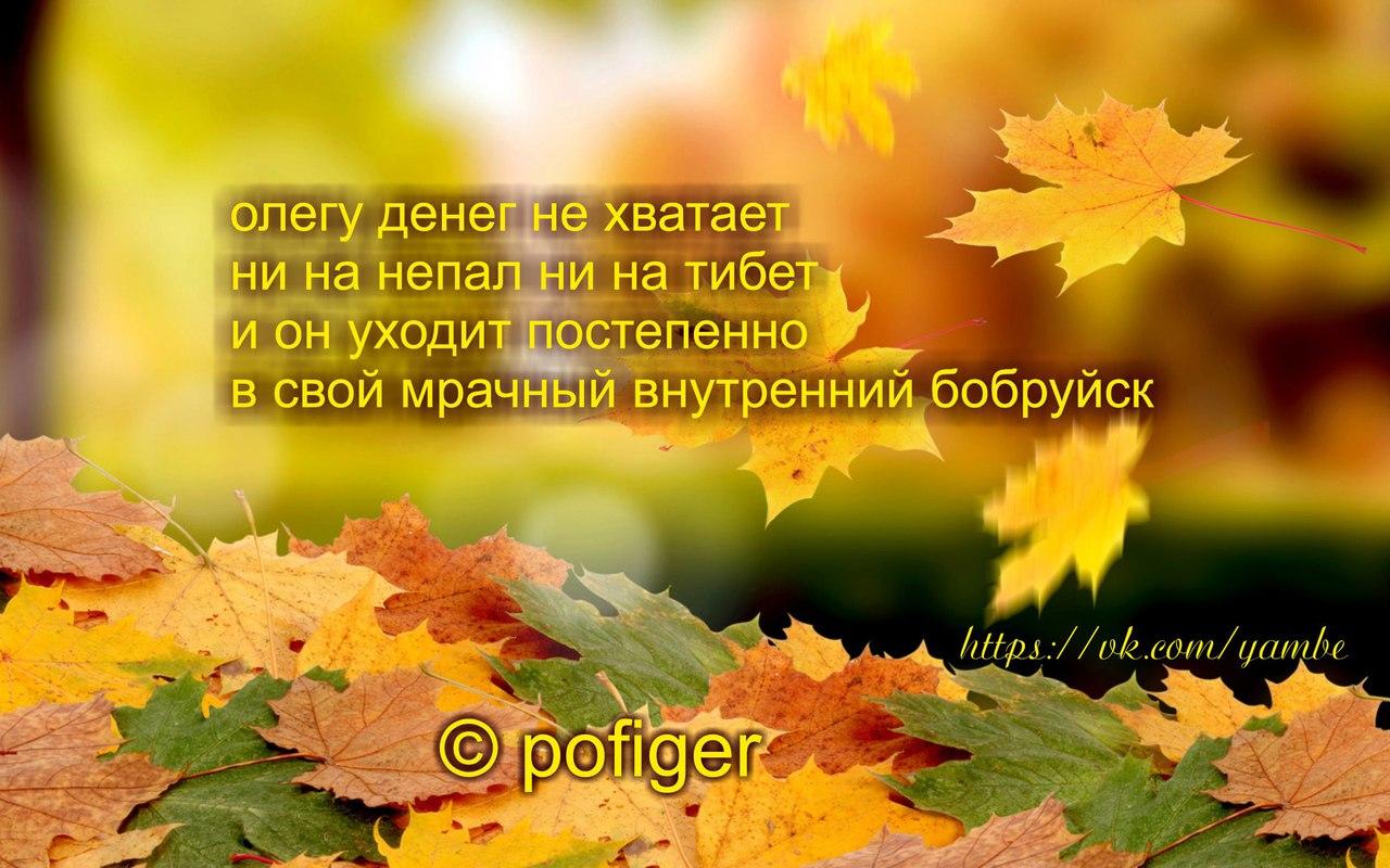 https://pp.vk.me/c636531/v636531850/25c54/B3YU7z1-X7I.jpg