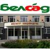 БЕЛСАД - Институт плодоводства