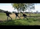 The XX–Reconsider Fiction | choreography by Olesya Ukrainets |