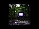 Bones - DISGRACE [Full Album]