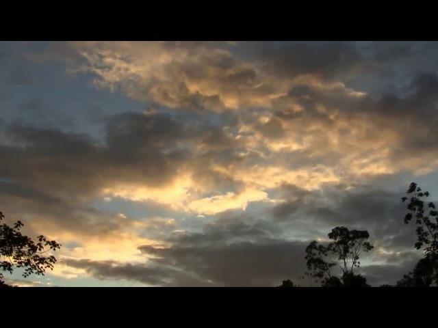 Вечернее небо на реке Типутини в Амазонии в Эквадоре