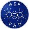 Молодые учёные ИБР РАН