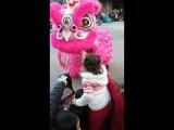 Китайский новый год. Николь кормит дракона