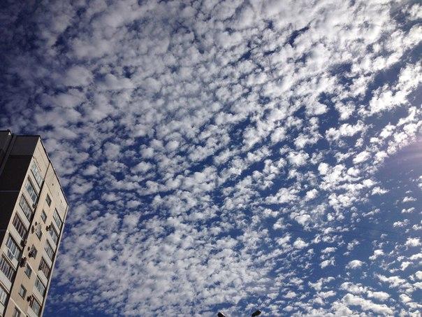 Самарское небо    Фото: Алёна Новикова