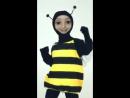 Танцююча бджола