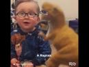 Двухлетний мальчик знает названия всех динозавров Funny Videos by Dipsy
