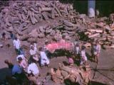 Духовное безумие в масштабах гос-в ( Шокирующая Азия.часть 1.1981 ) операция по смене пола