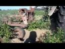 Самодельный трактор. Окучивание картошки в жару(SJcam5000)