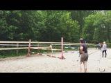 grape_fru video