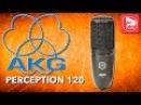 AKG PERCEPTION 120 P120 доступный студийный конденсаторный микрофон