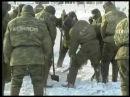 Дисбат Военная Исправительная Колония Дисциплинарная Не-Учебная Войсковая Часть