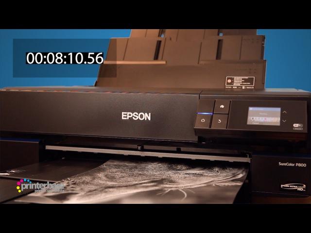 Epson SureColor SC-P800 Fine Art Inkjet Printer Demonstration | printerbase.co.uk