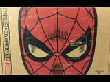 AFi Unboxing - Funkos Marvel Collector Corps Spider-man Box