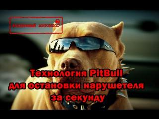 Новая_технология_Pit-bul._Остановит_нарушителя_за_секунды!