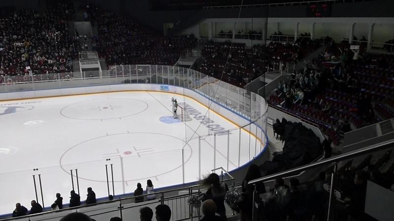 Динамо-Торос (2-1) 28.02.2017г. г. Санкт-Петербург ч.2