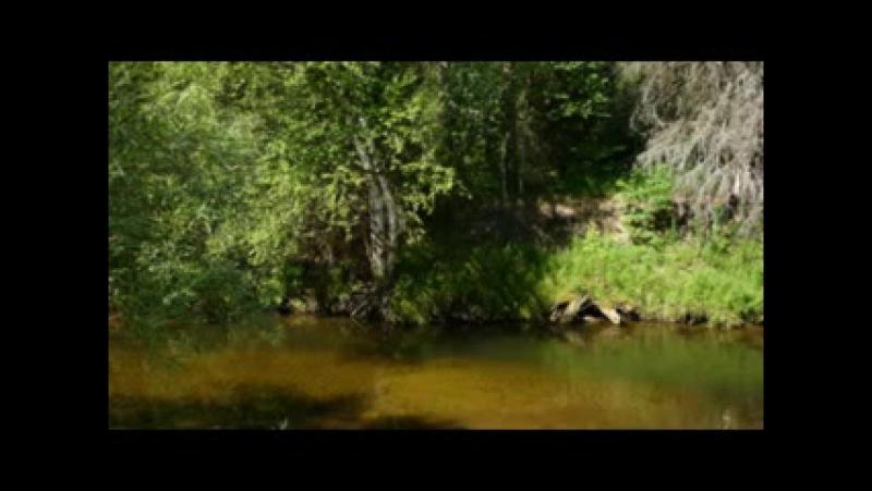 ПЕСНЯ РОССИЯ БЕРЕЗОВЫЙ КРАЙ И РОДНИКИ СКАЧАТЬ БЕСПЛАТНО