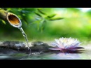 Relaxing Piano Music: Sleep Music, Water Sounds, Relaxing Music, Meditation Music ★47🍀