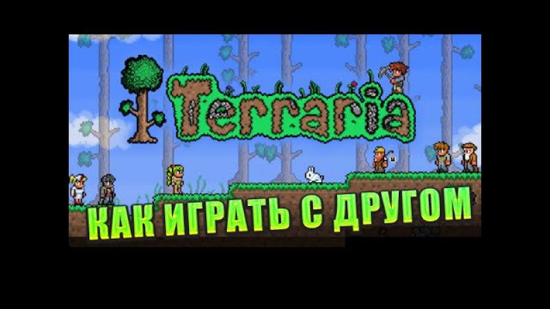 Как играть в Terraria с другом на пиратке