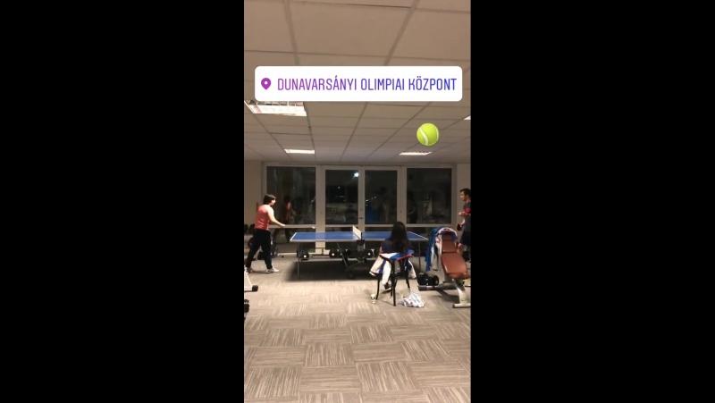 Настольный теннис сборной России