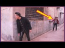 Funny videos 2016 funny pranks try not to laugh challenge
