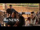 Vineyard Worker Harassed By Patrons What Would You Do WWYD