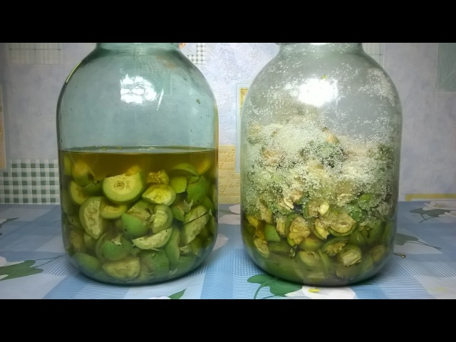 Настойка на зеленых орехах На водке и без водки Два рецепта