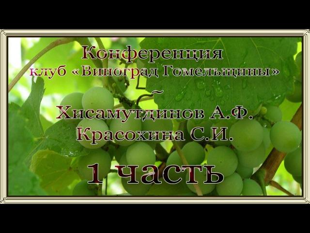 Конференция Гомельского клуба с Красохиной С И и Хисамутдиновым А Ф - 1 часть