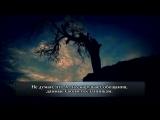 Чтец Абдуль Азиз аз ЗахраниСура 14 Ибрахим, 42-52