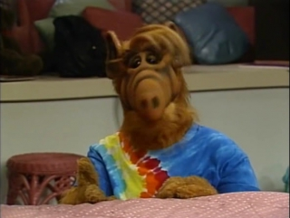 Alf Quote Season 4 Episode 23_Альф и Линн о комнате