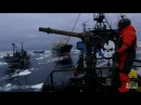Ships Collide in Final Confrontation Whale Wars