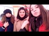 julia_hamster video
