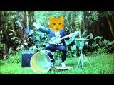 The Fabulous Go-Go Boy From Alabama - Cat Talkin' #bluestrash #onemanband