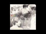Markus Stockhausen &amp Zoro Babel  Snow Falling