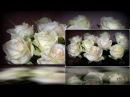 опа гангам стайл- букет из белых роз remix- Монтаж Светлана Левина
