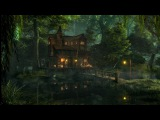 Swamp Sounds at Night - Frogs, Owls, Crickets, Light Rain, Forest Nature Sounds 3 Hours