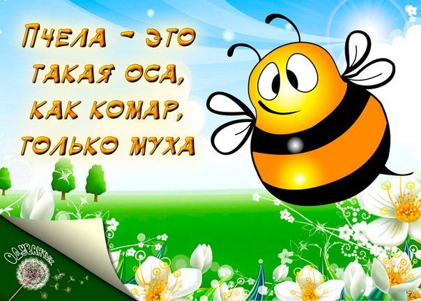 https://pp.vk.me/c636620/v636620075/6197/pm7oa9qC-iI.jpg