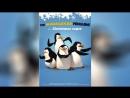 Пингвины из Мадагаскара 2008