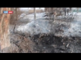 Сводка новостей_ ДНР, ЛНР, Сирия, мир _ 24.01.2017