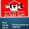 """ПЕРВЫЙ ПРИЮТ для животных в г.Алматы """"Белый Бим"""""""