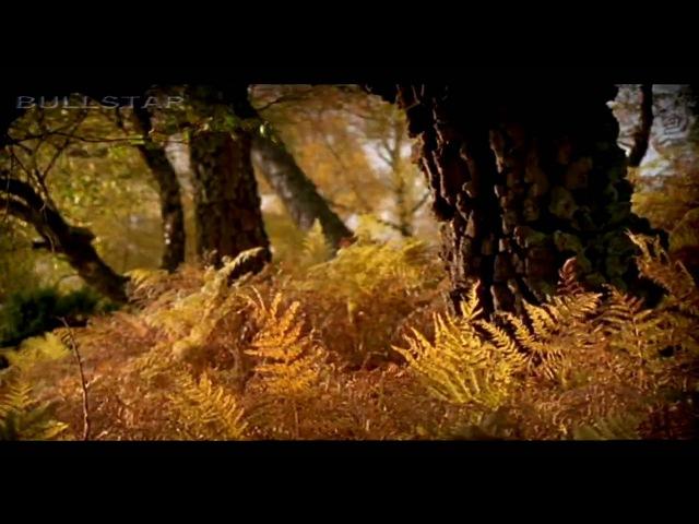 Karunesh Autumn Leaves-Őszi Levelek [HD-BS]