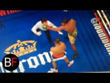 Boxing referee gets punched after the round! boxing referee gets punched after the round!