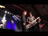 Manfred Mann`s Earth Band - Losheim 2015 - Blinded By The Light -