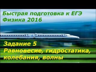 Быстрая подготовка к ЕГЭ по физике 2016 Задание 5 (равновесие, гидростатика, колебания, волны)