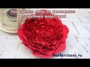 DIY How to make foam flowers Как сделать пион из фоамирана подробный видео урок