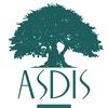 ASDIS Академическая Школа Дизайна Имиджа и Стиля