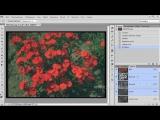 Как быстро улучшить качество фотографии
