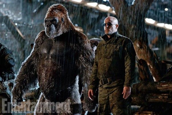 Планета обезьян война фильм 2018 премьера в кино